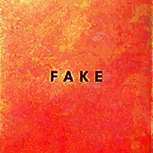 die nerven fake cover
