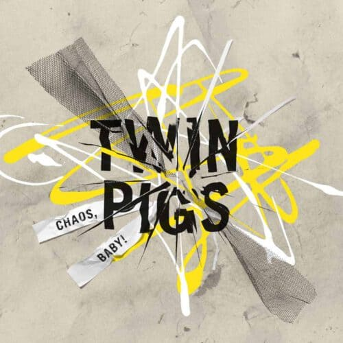 Twin Pigs Cover